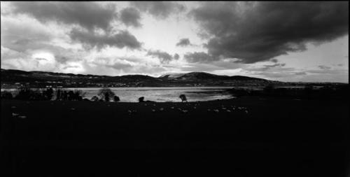 Ireland#14 (large view)