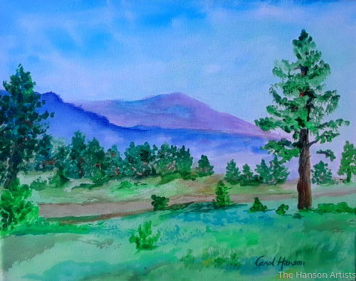 """Tarryall Landscape"""
