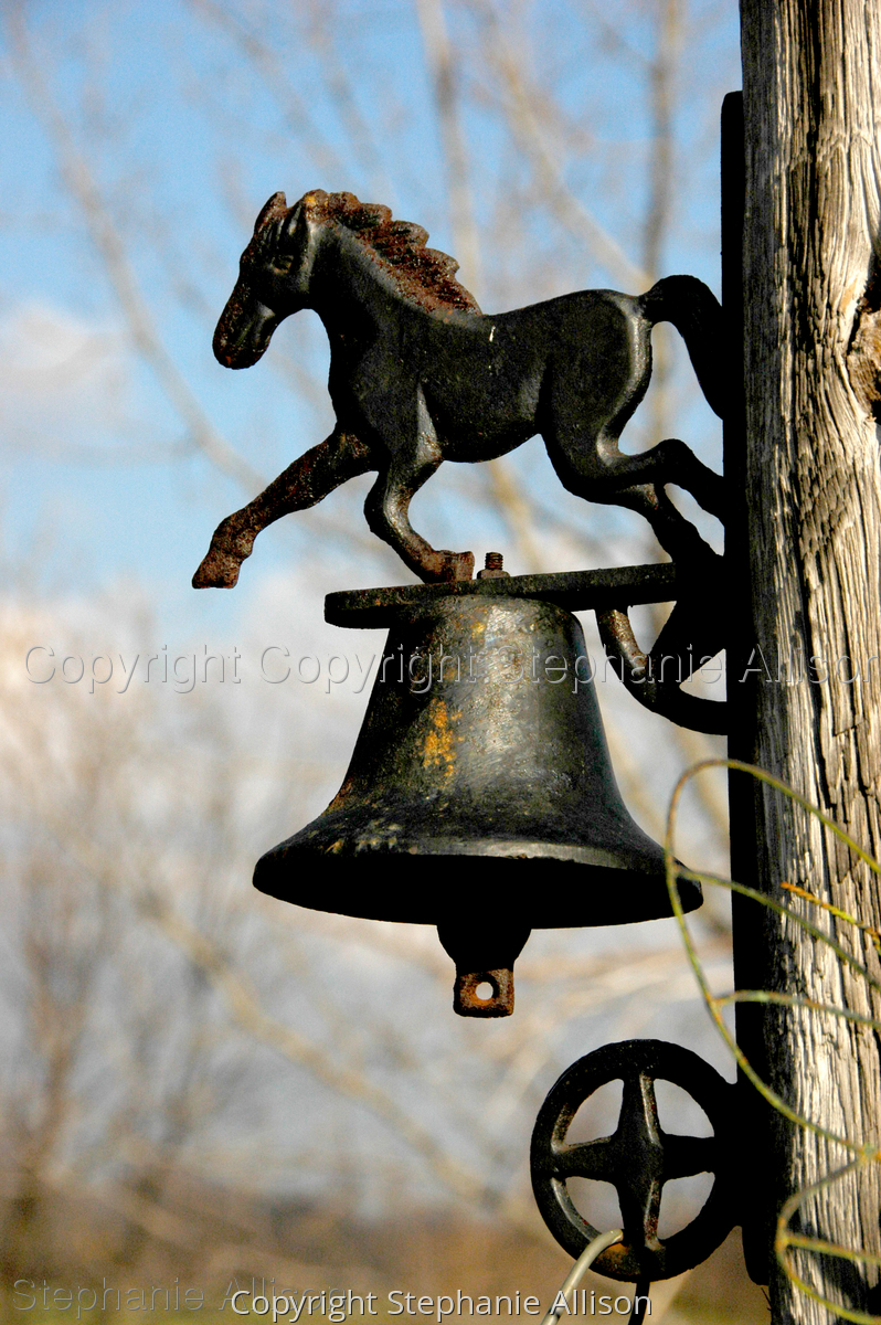 Dinner Bell (large view)
