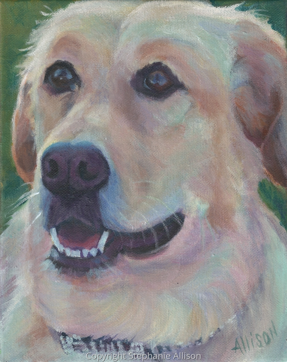 Portrait of a dog in acrylics (large view)