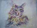 Cat (thumbnail)