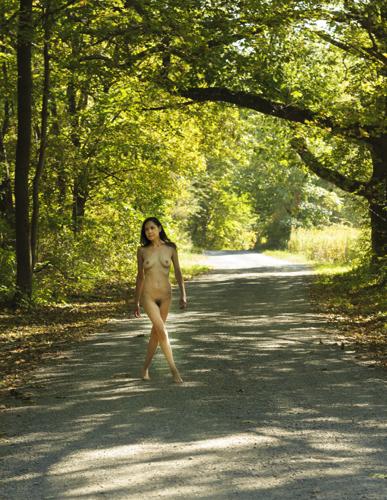 A Walk Down the Lane #1