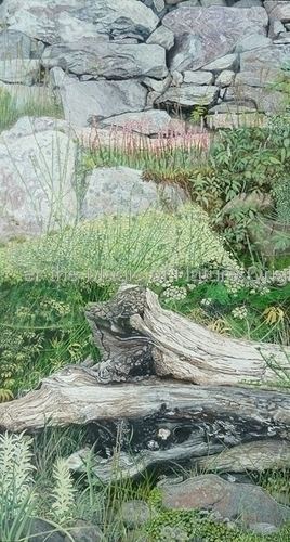 By the Roadside by  Discover the Magic of Nature. Original Hyperrealistic Paintings in Acrylics