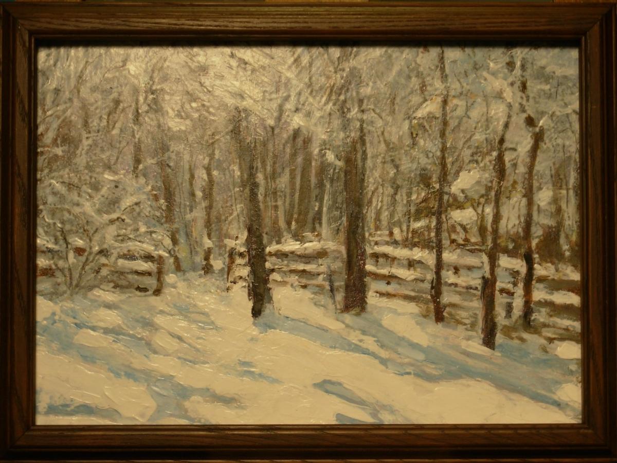 Backyard Snow 1 (large view)