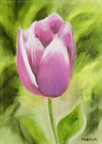 Tulip Series #1: Pink Tulip