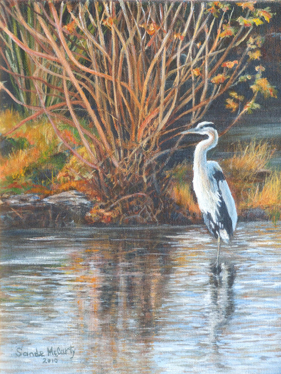 Autumn on the River - Great Blue Heron (large view)
