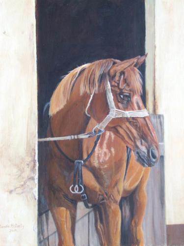 Sorrel in the Sun - Horse