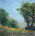 Summer Afternoon Trees (thumbnail)