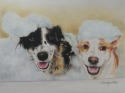 COMMISSIONED PASTEL DOG PORTRAIT (thumbnail)