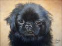 eve's dog (thumbnail)