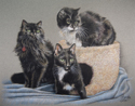 Three cats (thumbnail)