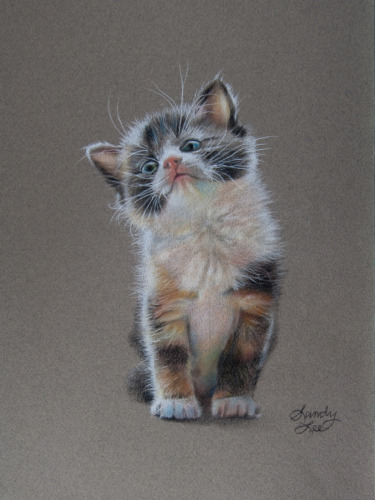 pastel commission of a kitten