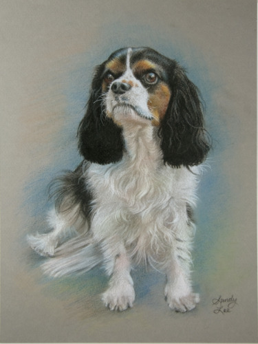 portrait of king charles cavalier#1