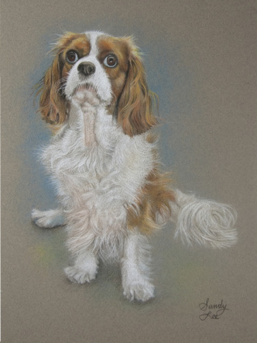 Portrait of king charles cavalier#2