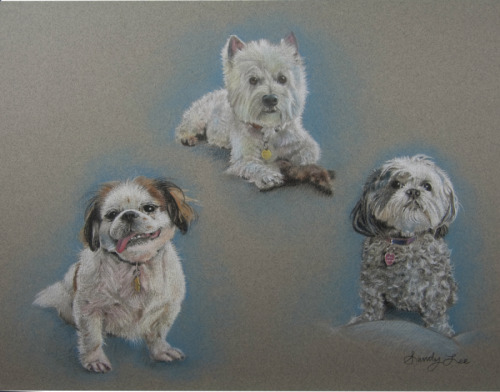 COMMISSIONED PASTEL of THREE DOGS