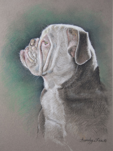 COMMISSIONED PASTEL PORTRAIT