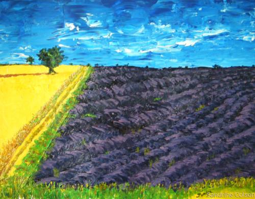 """Plateau de Valensole"", Provence, France"