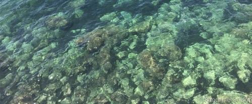 Marseille's Water