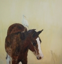 Vieques horse with mount, MelindaHoffman.com (thumbnail)