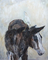 Vieques Horse and Bird (thumbnail)