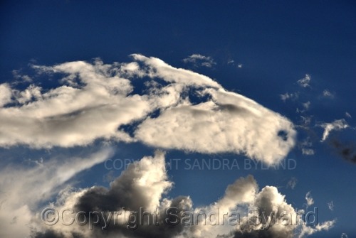 Cloud by SANDRA BYLAND