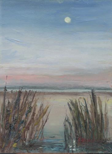 Marsh Moonscape in Blue