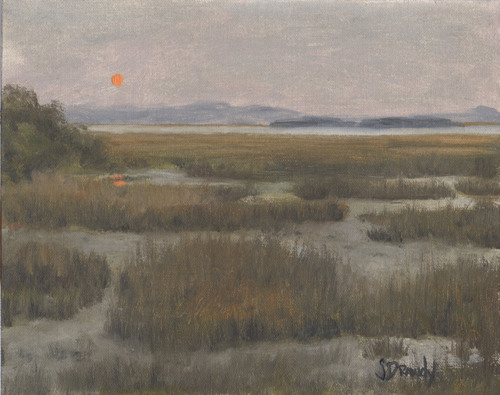 Marsh with Orange Moon