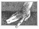 Fingered (thumbnail)