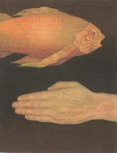 FISH AND HAND