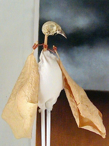 BIRD SKULL PUPPET (detail)