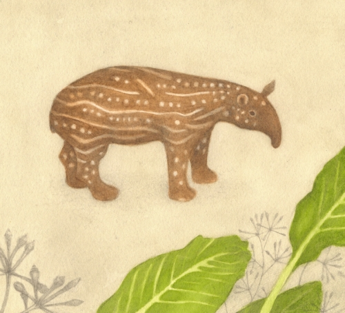 Or helped a young tapir along the way.