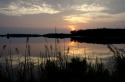 Photograph of a sunset marsh (thumbnail)