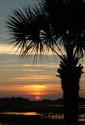 BACKYARD SUNSET OPUS 1 (thumbnail)