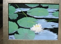 """WATER LILIES"" (thumbnail)"