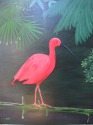 Scarlet Ibis with leaves (thumbnail)