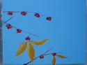 winter branches with yellow leaves and red berries (thumbnail)