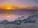 """COASTAL SUNSET"" (thumbnail)"