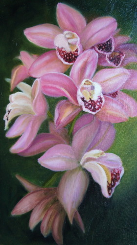 PINK ORCHIDS'