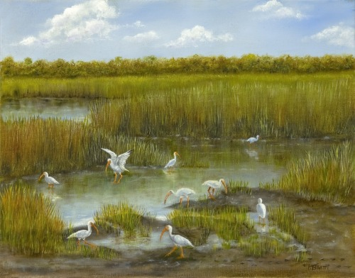 """""""THE MEETING PLACE"""" WHITE IBIS"""