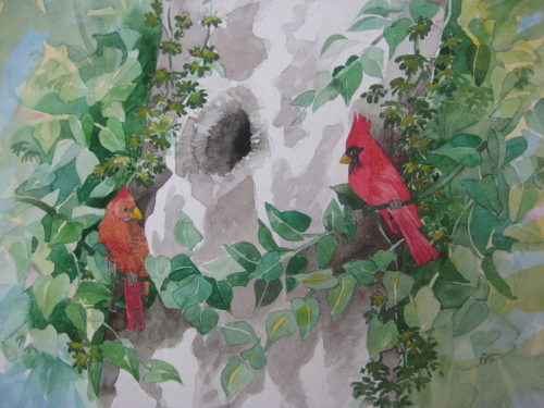 """INTIMATE LANDSCAPE-CARDINALS"" (large view)"