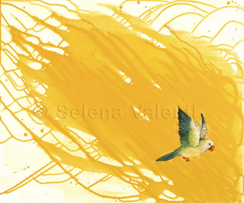 Flight by Selena Valenti
