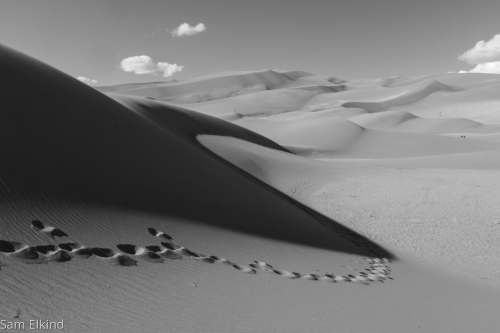 Dune Melody