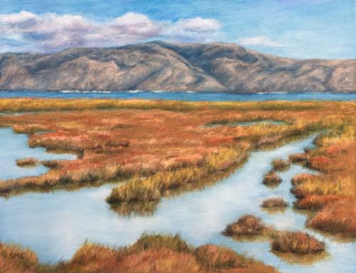 Palo Alto Baylands, Winter by Susan Englert