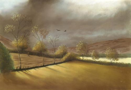A Moorland Shower