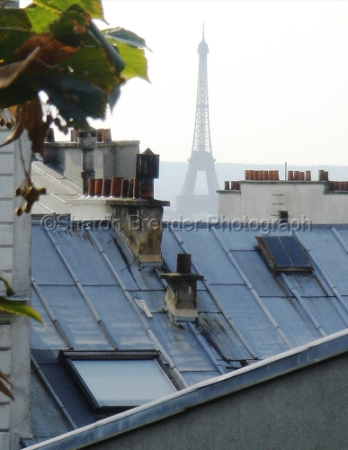 Paris though the Rooftops