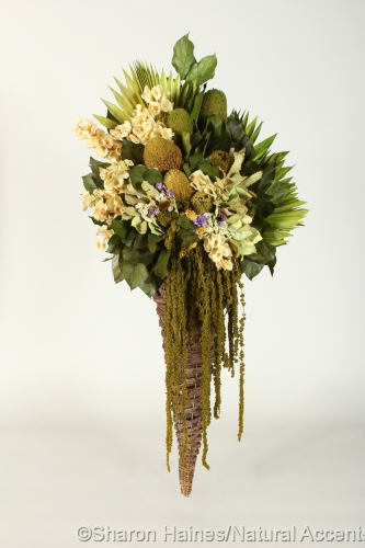 Amaranthus Cone