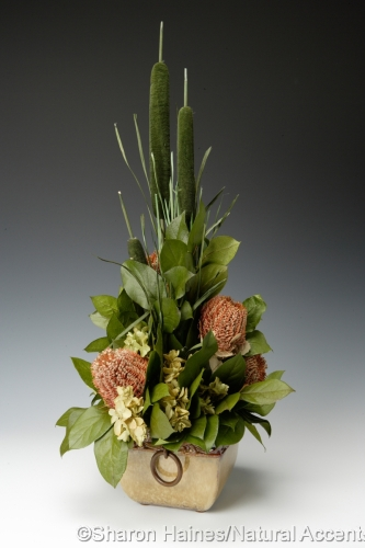 Square Pot with Banksia