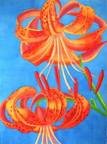 Turks Cap Lilies II by Marjorie Shaw Kubach
