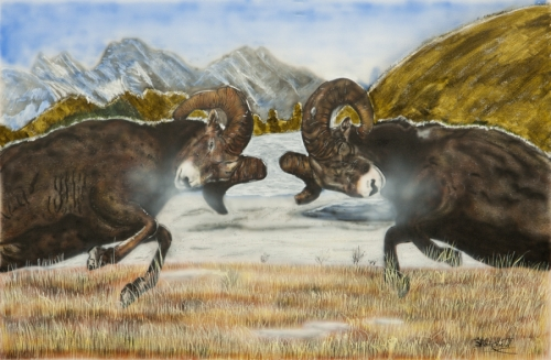 Painting Quot Bighorn Sheep The Rut Quot Original Art By Shawn