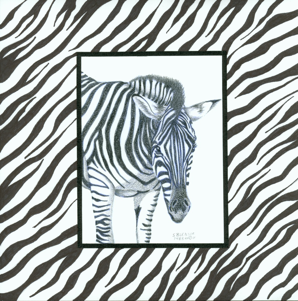Zebra by Design (large view)
